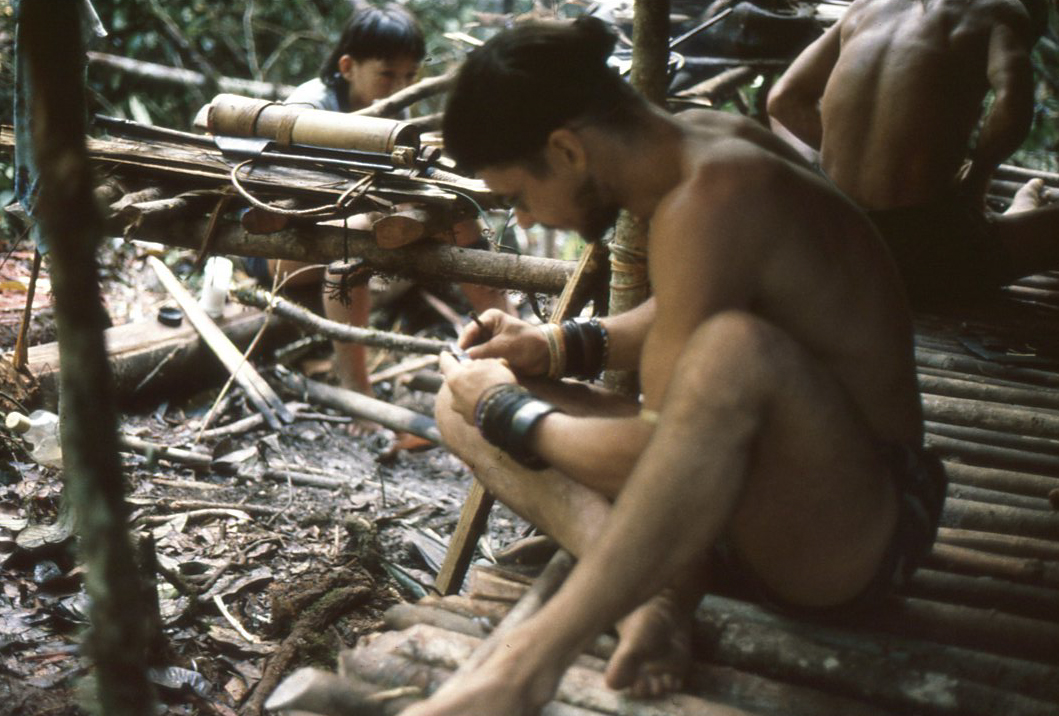 Book Review: The Last Wild Men of Borneo